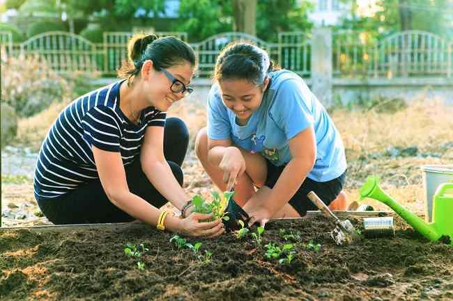 Manfaat Berkebun dan Memelihara Tanaman bagi Kesehatan - Alodokter