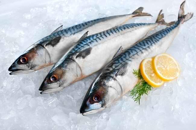 Jangan Lewatkan Beragam Manfaat Ikan Tongkol untuk Kesehatan Anda - Alodokter