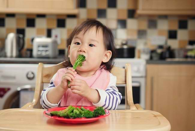 Pilihan Makanan Sehat untuk Bayi Berusia 4–12 Bulan - Alodokter