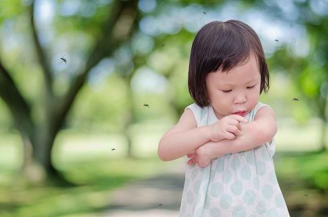Cara Aman dan Efektif Melindungi Si Kecil dari Gigitan Nyamuk - Alodokter