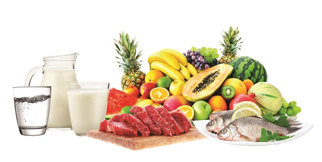 diet untuk SN-01-01 (1)