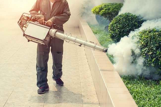 Ini Dampak Negatif Fogging Nyamuk bagi Kesehatan - Alodokter