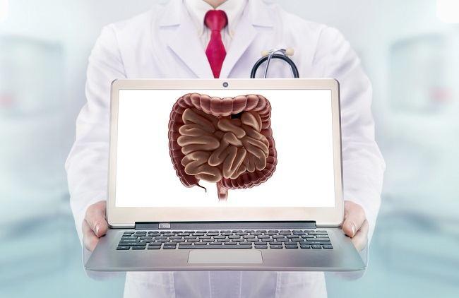 Memahami Sistem Pencernaan Manusia - Alodokter