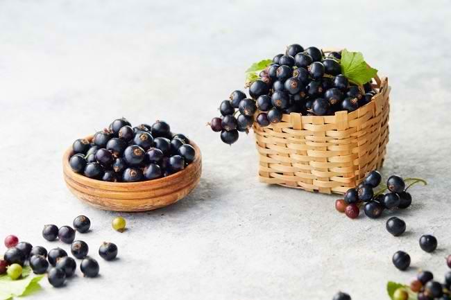 Kenali Nutrisi dan Manfaat Blackcurrant bagi Kesehatan Tubuh - Alodokter