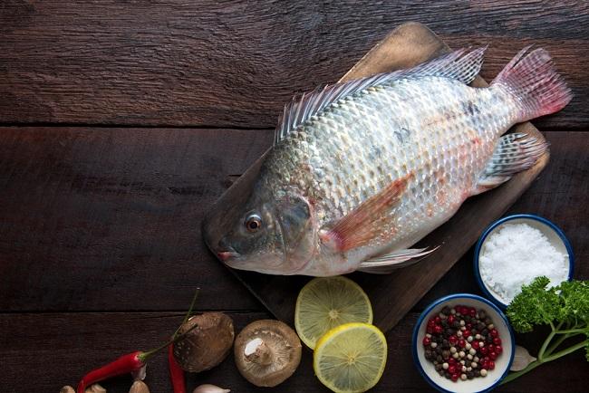 Ini Manfaat dan Bahaya Ikan Mujair yang Perlu Anda Ketahui - Alodokter