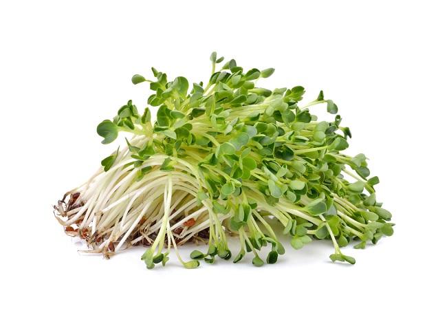Mengenal Tanaman Alfalfa dan Beragam Manfaatnya bagi Kesehatan - Alodokter