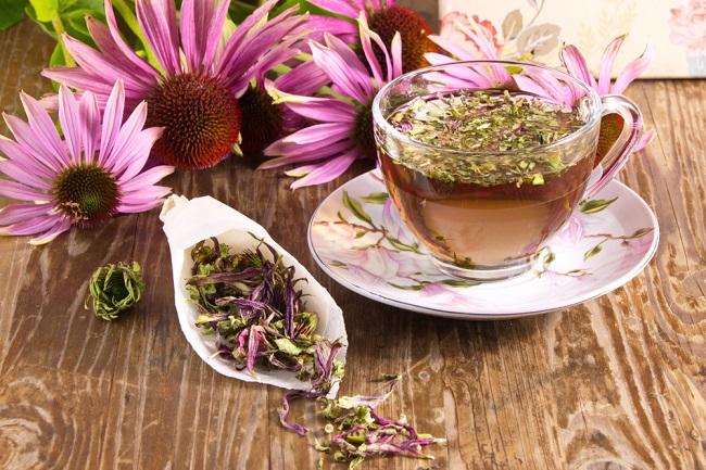 5 Manfaat Echinacea, dari Mengobati Pilek hingga Menurunkan Gula Darah - Alodokter