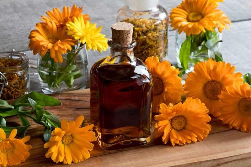 6 Manfaat Calendula untuk Kesehatan Kulit - Alodokter
