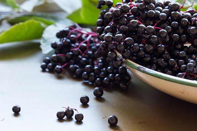 Meski Berukuran Kecil, Manfaat Elderberry untuk Kesehatan Sangat Melimpah - Alodokter