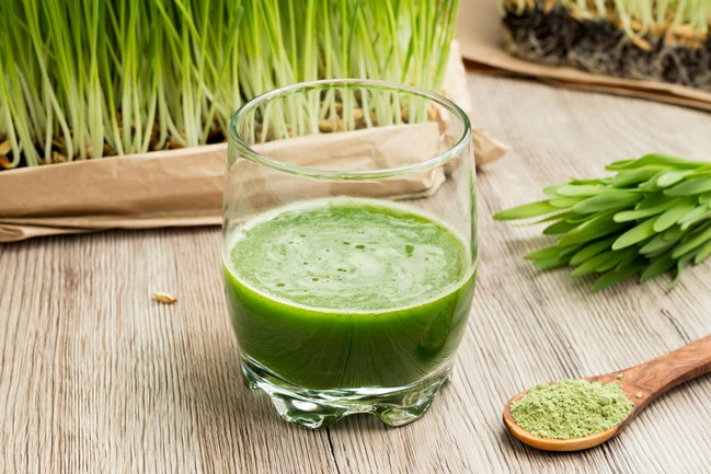 A,Glass,Of,Barley,Grass,Juice,With,Freshly,Grown,Barley