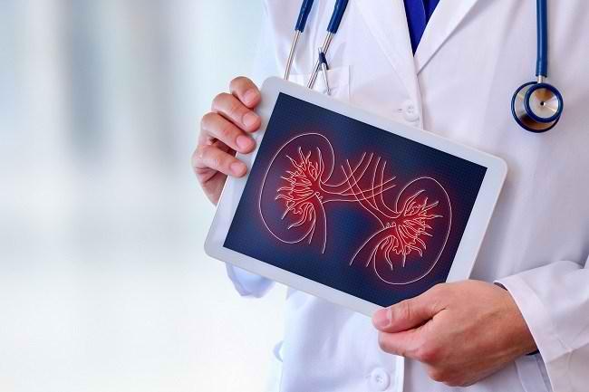 Biopsi Ginjal, Ini yang Harus Anda Ketahui - Alodokter