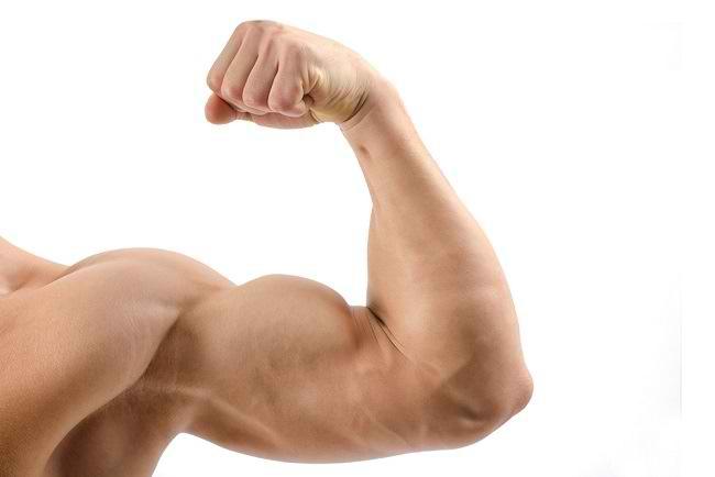 5 Cara Membesarkan Otot Lengan dengan Mudah - Alodokter