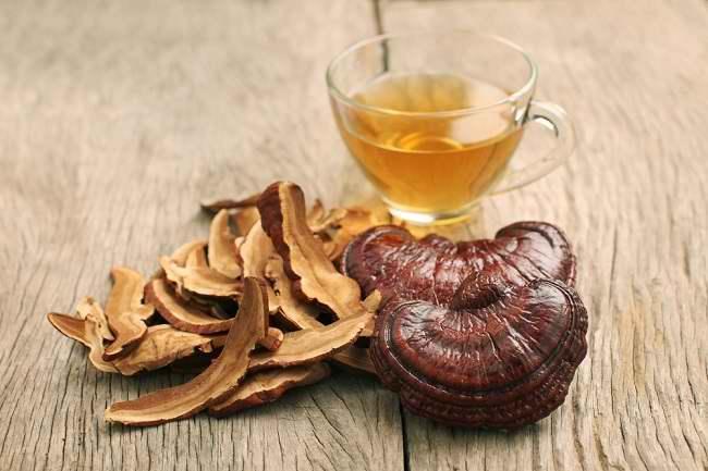 Kenali 5 Manfaat Jamur Ganoderma bagi Kesehatan - Alodokter