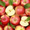 แอปเปิ้ล กินดีมีประโยชน์ต่อสุขภาพจริงหรือ