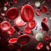 โรคเลือด ภัยร้ายที่ส่งผลต่อสุขภาพ