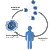 Imunoterapi pada Kanker dengan Terapi Chimeric Antigen Receptor Sel T