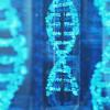 กรดนิวคลีอิก สารพันธุกรรมและต้นกำเนิดของสุขภาพดี