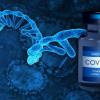 Memahami Mekanisme Kerja Vaksin mRNA COVID-19