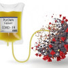 Plasma Konvalesen untuk Pasien COVID-19 Risiko Tinggi yang Menjalani Rawat Jalan-Telaah Jurnal Alomedika