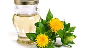 ดอกคำฝอยและประโยชน์ต่อสุขภาพ
