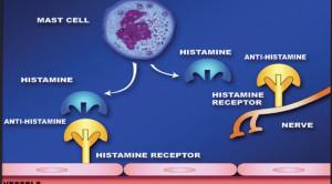 Antihistamin Tidak Disarankan untuk Asma