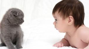 Benarkah Hewan Peliharaan Dapat Membuat Bayi Lebih Sehat?
