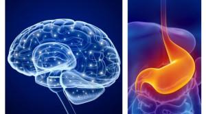 Gut-Brain Axis: Mitos atau Fakta