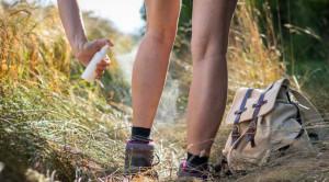 ไข้รากสาดใหญ่ เรียนรู้สัญญาณและการป้องกันโรคจากการเดินป่า