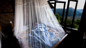 Profilaksis Malaria