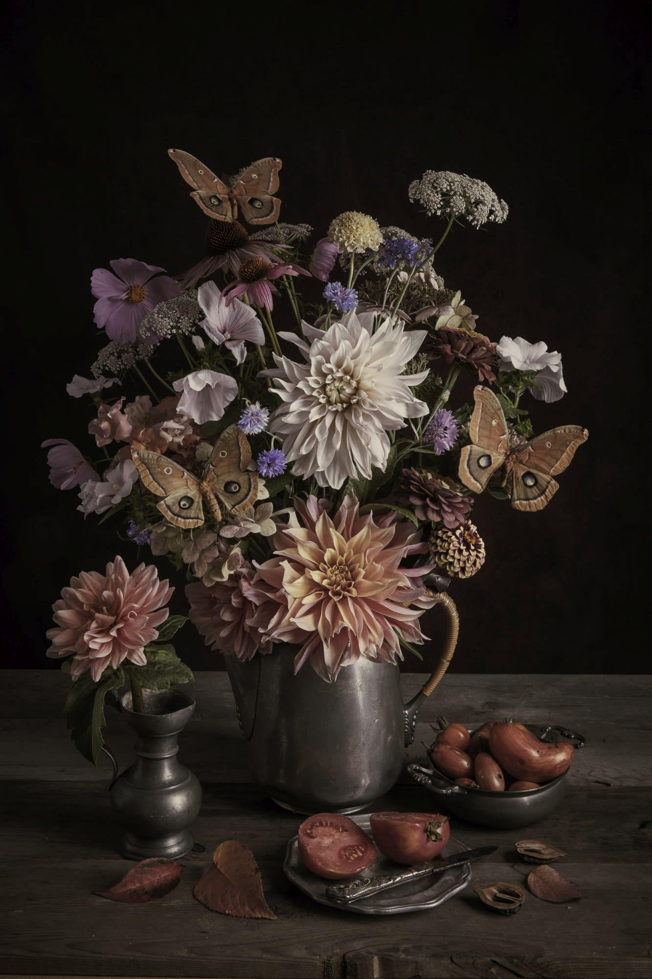 'Dahlia & Moths' by Kristin Sjarrda at Gallery 133