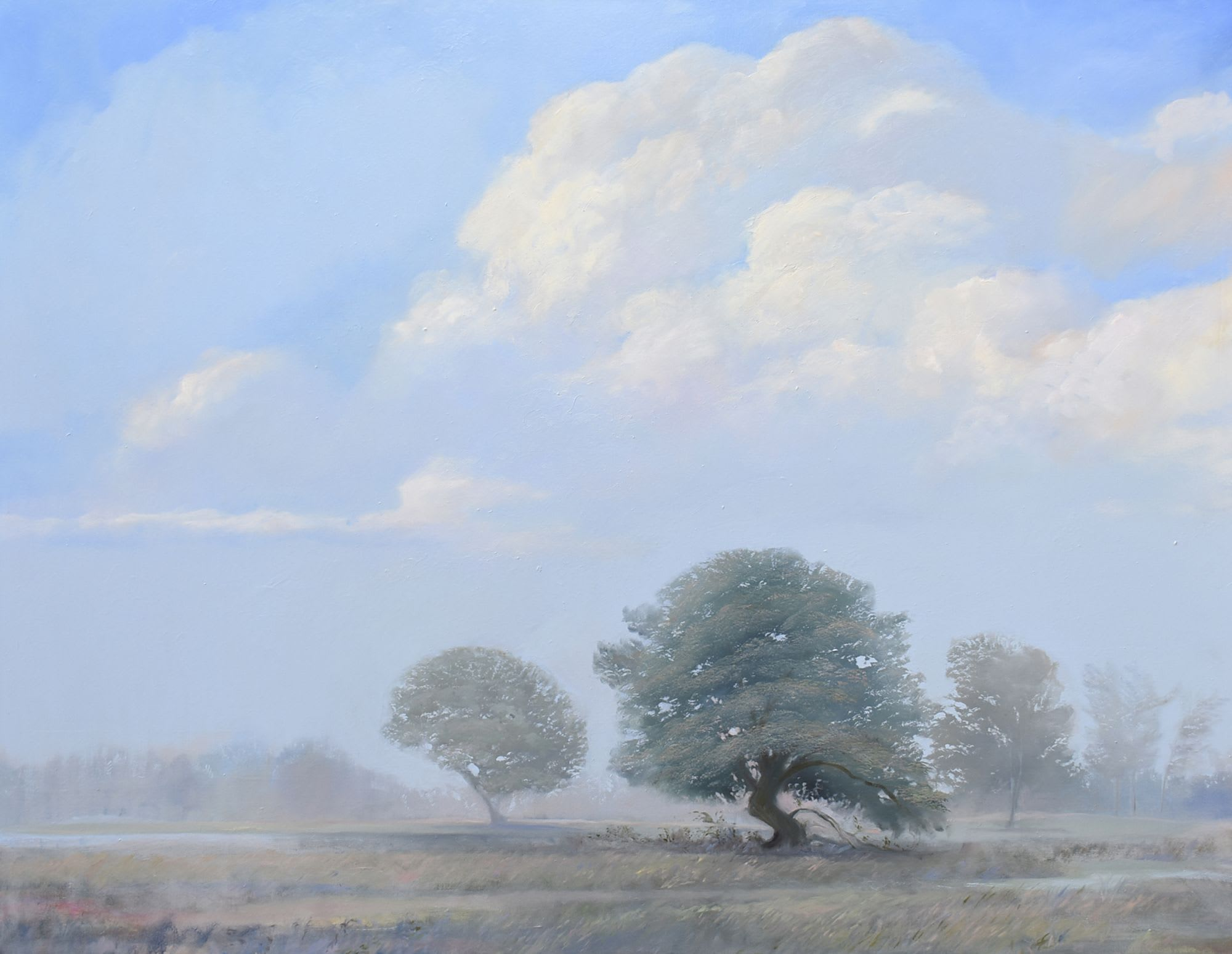 'Morning Mist' by Michael Harris at Gallery 133