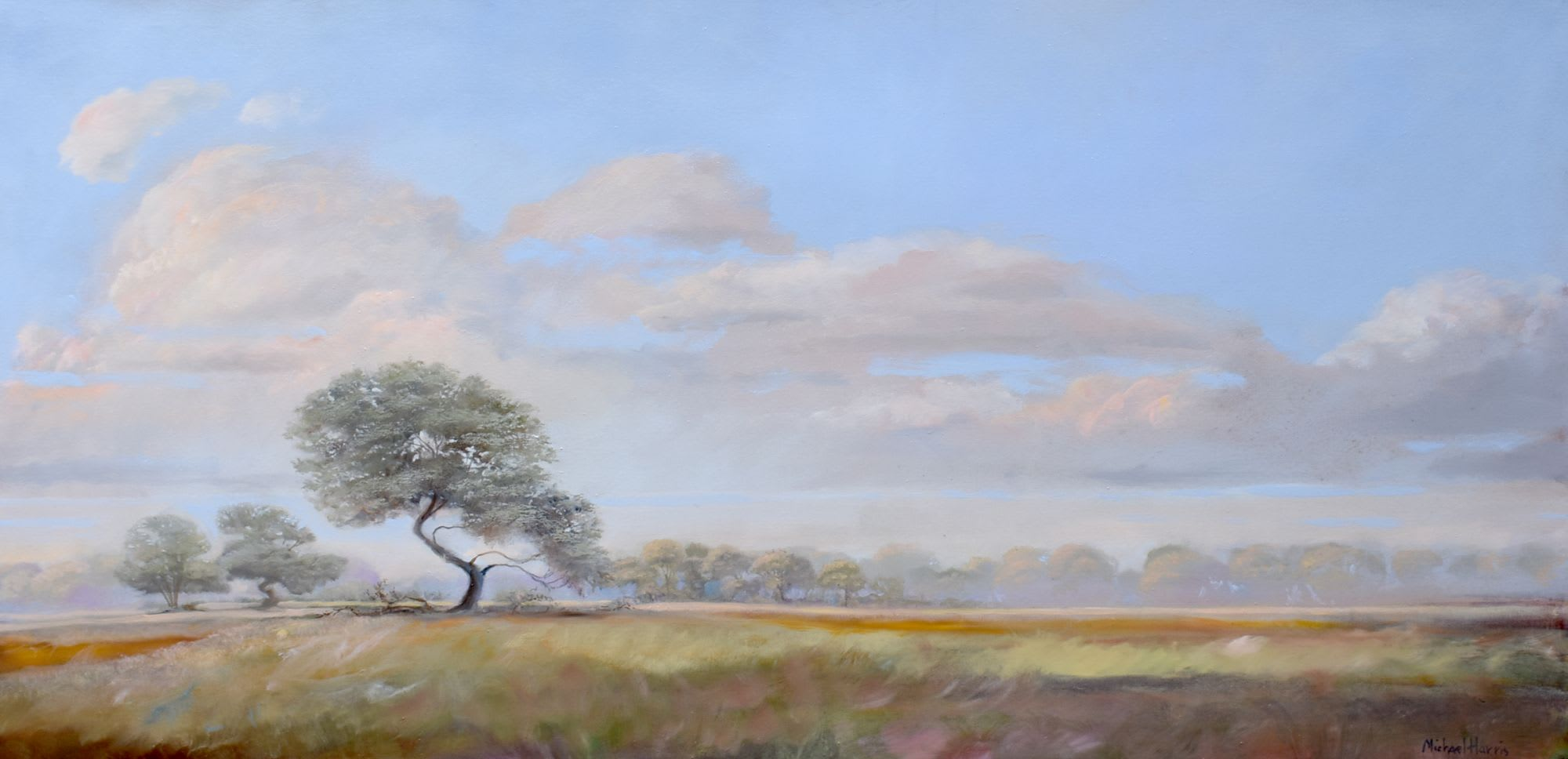 'Brilliant Light' by Michael Harris at Gallery 133