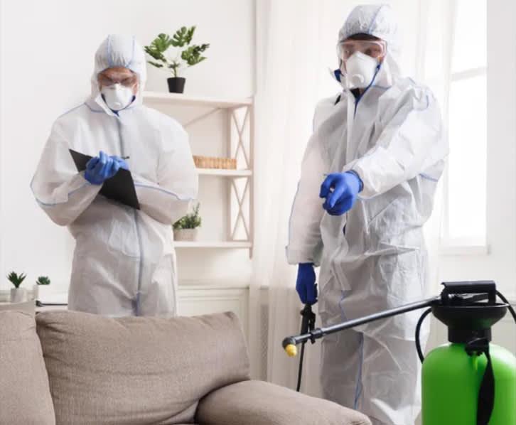 Disinfection FAQ
