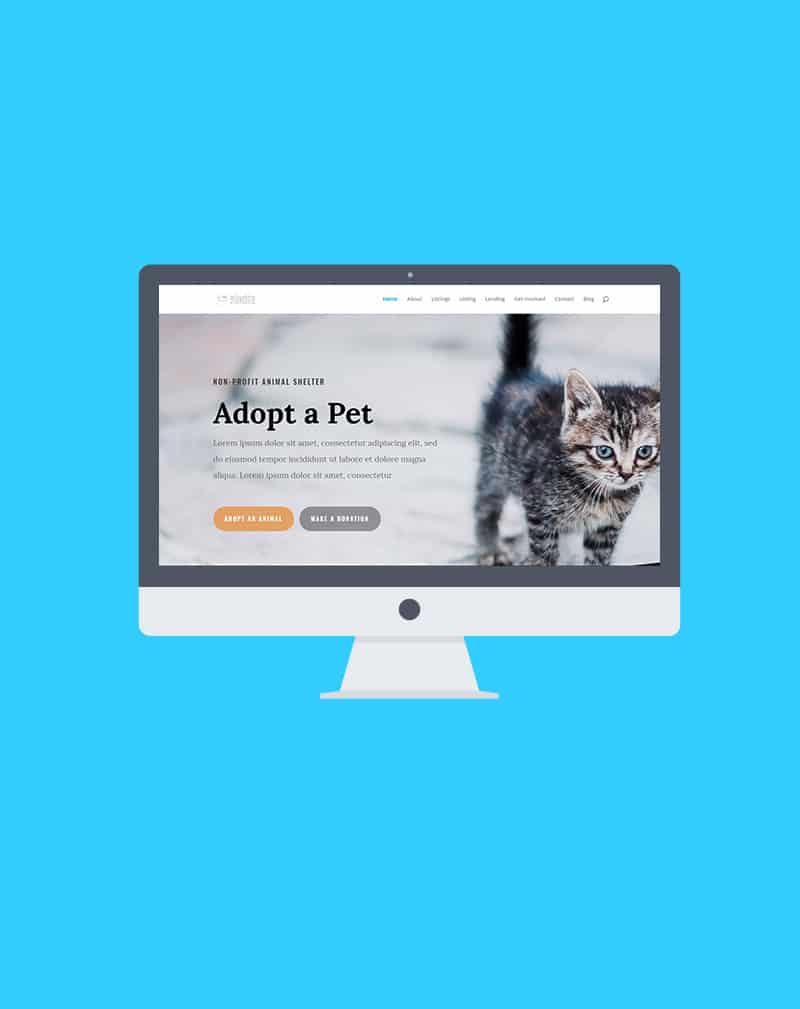 project animalshelter