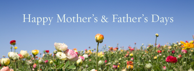 Honoring our Moms & Dads