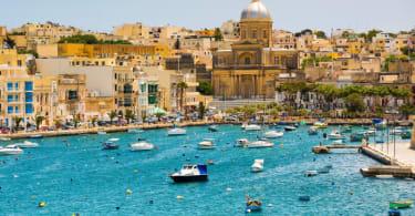 Malta generic