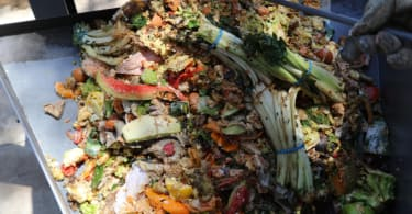 The G-Eco food waste.