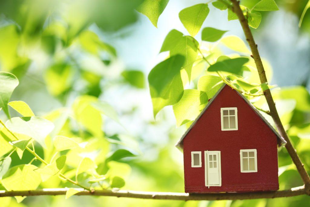 Пошаговая регистрация вновь построенного дома на дачном участке в 2021 г