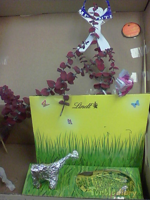 Maddies Recycled Safariland - Earth Day Contest April 2015 Submission