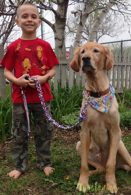 Recycled tshirt dog leash - Earth Day Contest April 2015 Submission
