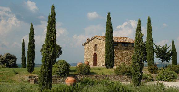 From Siena: Brunello di Montalcino Wine Tour by Minivan