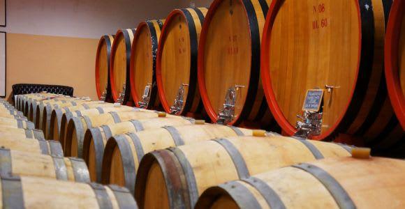 Brunello di Montalcino Full-Day Wine Tour with Tastings