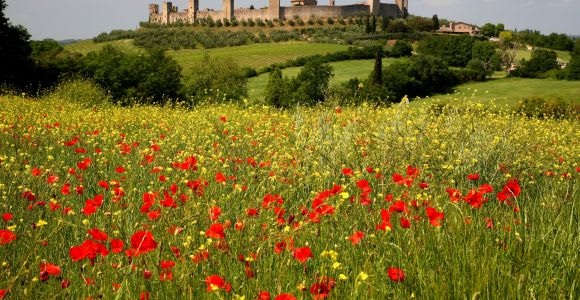 Siena: Half-day Guided Hike to Monteriggioni