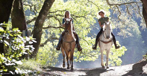 From San Gimignano: Horseback Riding in Tuscany