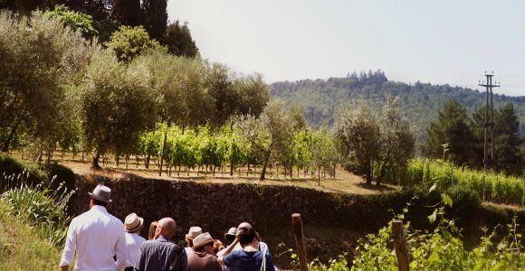 Verona: degustazione di Amarone