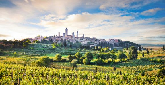 Siena 2-Hour Private Guided Walking Tour