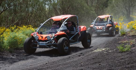 Catania: Half-Day Buggy Tour of the Etna Volcano