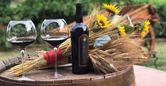 San Gimignano: Private Winery Tour, Wine & Oil Tasting