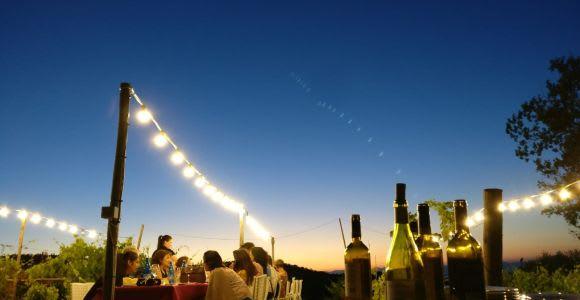 From Siena: Dinner in the Chianti Vineyards