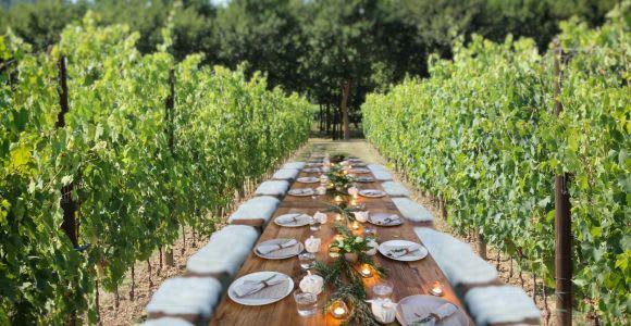 San Gimignano: Private Vineyard Walk & Lunch